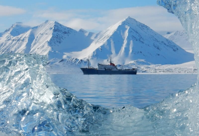 Spitsbergen - Luxury cruise in the search of the polar bear