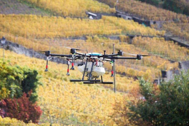Les robots au service de la viticulture