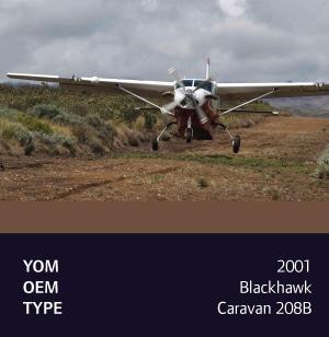 2001 Blackhawk Caravan 208B